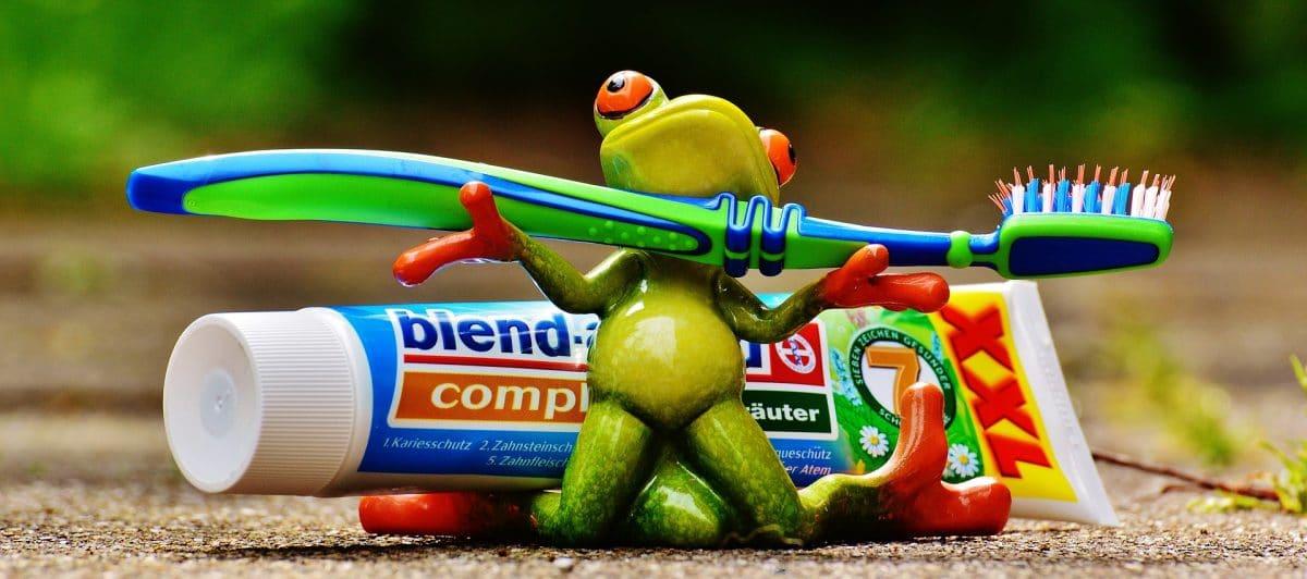toothbrush in hands